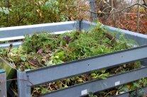 Was darf auf den Kompost?