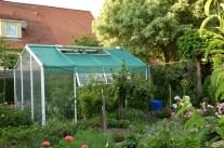 """Das """"Glashaus"""" für kälteempfindliche Gemüsepflanzen"""