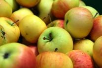 Lagerkontrollen bei Obst und Gemüse