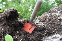 Der Boden – unser wichtigstes Gut