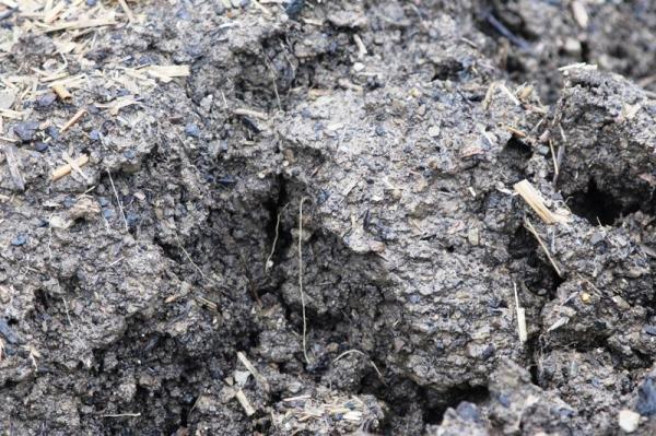Nasser Boden Verhindert Gartenarbeit Gartenarbeit Dezember Was Tun