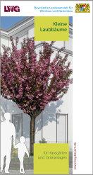 Merkblatt Kleine Laubbäume