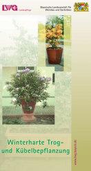 Merkblatt Winterharte Trog und Kübelbepflanzung